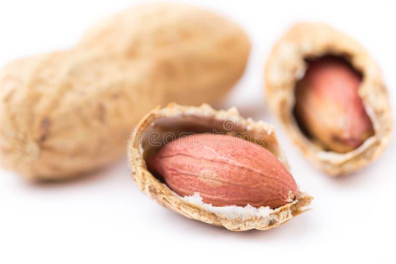 Zamyka w górę rozszczepionych arachidów w skorupie na białym tle Zdrowy jedzenie, całe bez leczenia dokrętki, wyśmienicie przekąs zdjęcie royalty free