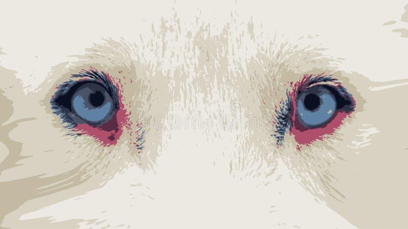 Zamyka w górę siberian husky niebieskich oczu vectorized ilustracji