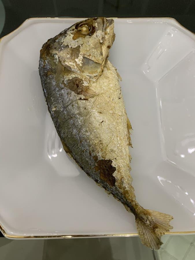 Zamyka w górę smażącej makreli na białym talerzu obraz royalty free