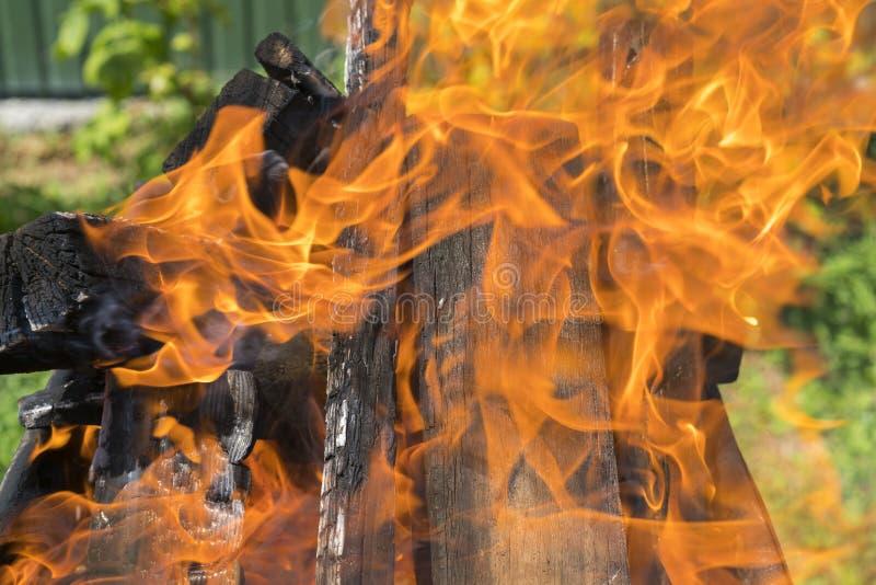 Zamyka w górę strzału palenie zamazuj?cy t?o Gotować węgle dla kulinarnego grilla na grillu Piękny ognisko płonący dąb zdjęcia royalty free
