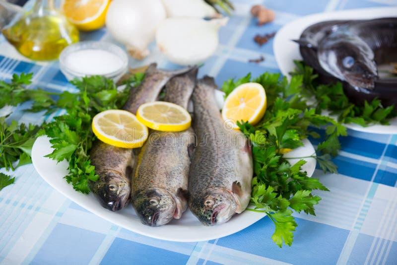 Zamyka w górę widoku przy denną węgorz ryba przygotowywającą dla gotować zdjęcie stock