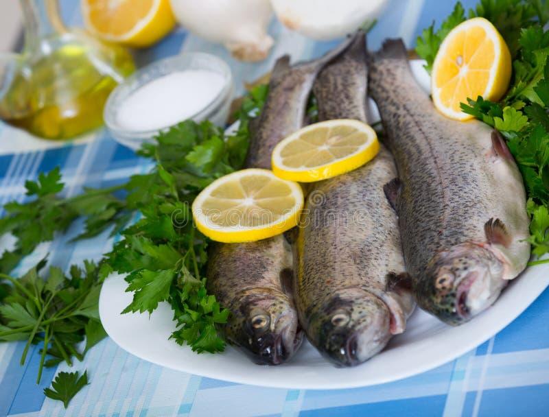 Zamyka w górę widoku przy denną węgorz ryba przygotowywającą dla gotować zdjęcia stock