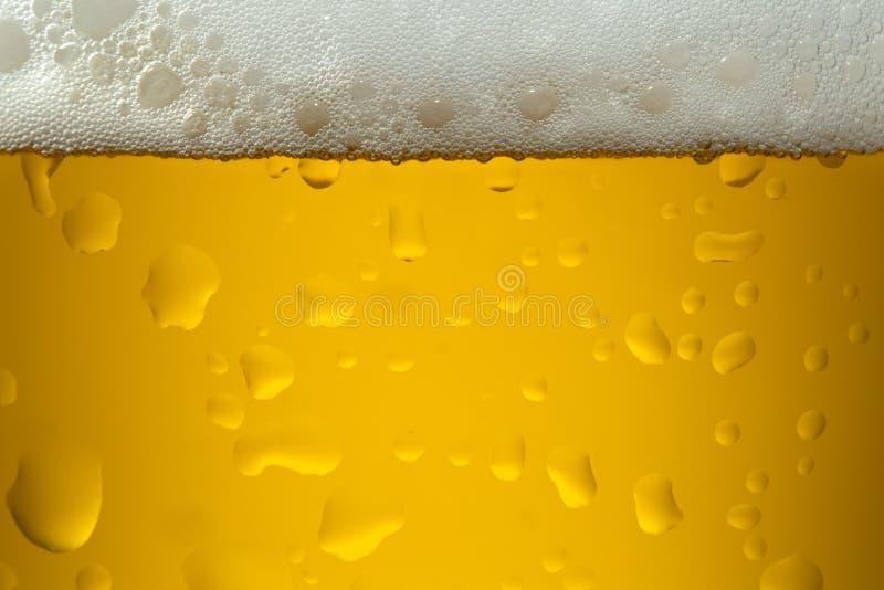 Zamyka w górę wizerunku piwo fotografia royalty free