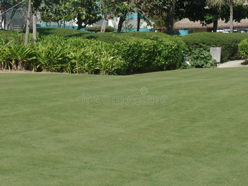 Zamyka w górę wizerunku pole golfowe obrazy stock