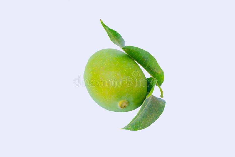 Zamyka w górę zielonego mango i zielenieje liście odizolowywających zdjęcie stock