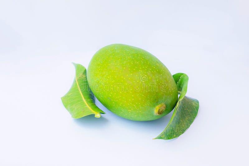 Zamyka w górę zielonych mango i zielenieje liście odizolowywających obraz royalty free