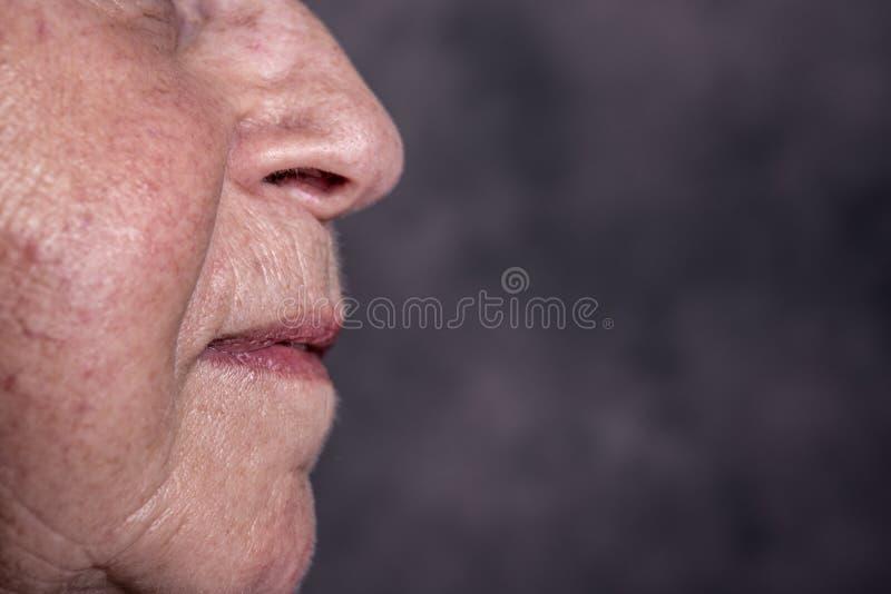 Zamyka w g?r? portreta starsza kobieta fotografia royalty free
