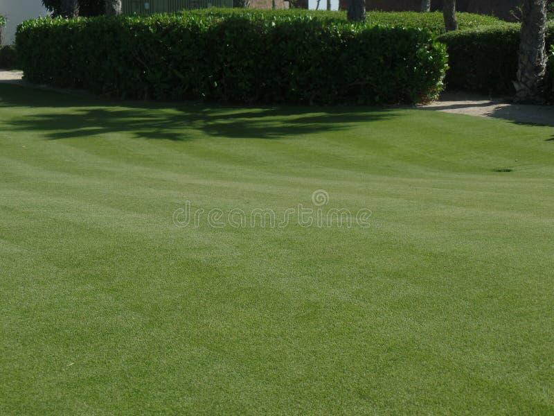 Zamyka w g?r? wizerunku pole golfowe obrazy royalty free
