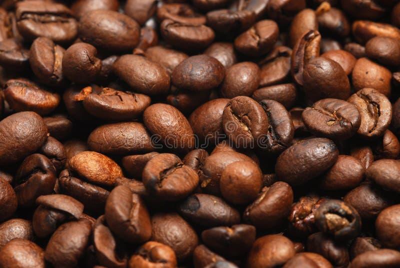 zamykają się ziarna kawy zdjęcie stock
