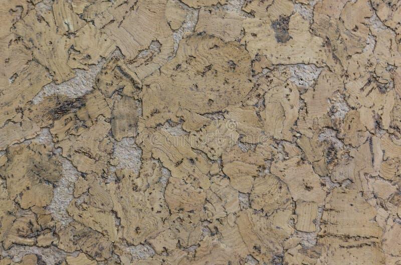 Zamykający up brązu korka drewna deski tekstury abstractpattern tło zdjęcia stock