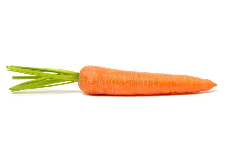 Zanahoria en blanco imagen de archivo