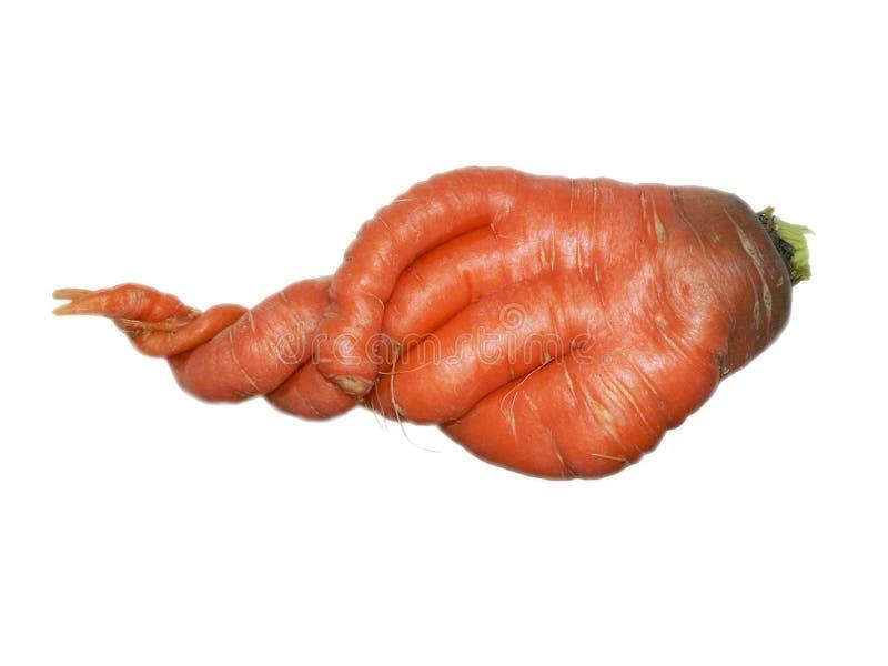 Zanahoria en un fondo blanco imagen de archivo libre de regalías