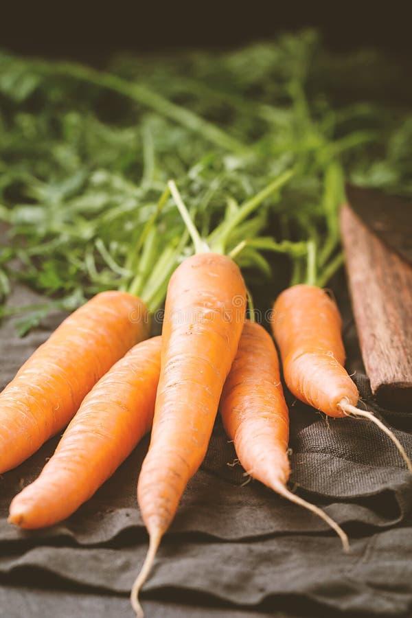 Zanahoria fresca y dulce fotografía de archivo