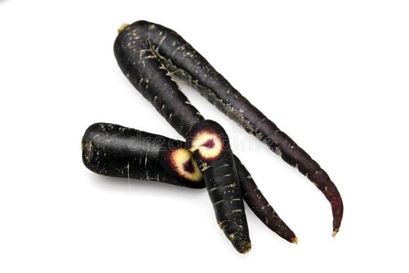 Zanahoria negra, scortzonera imagen de archivo libre de regalías