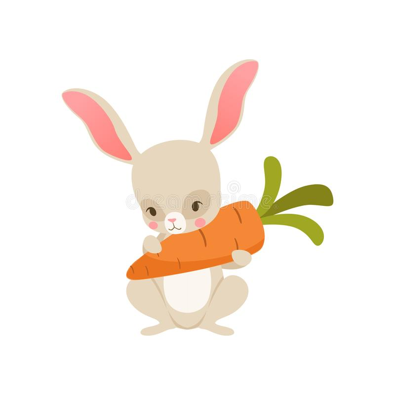 Zanahoria nolding del conejito lindo de la historieta, carácter divertido del conejo, ejemplo feliz del vector de la historieta d ilustración del vector