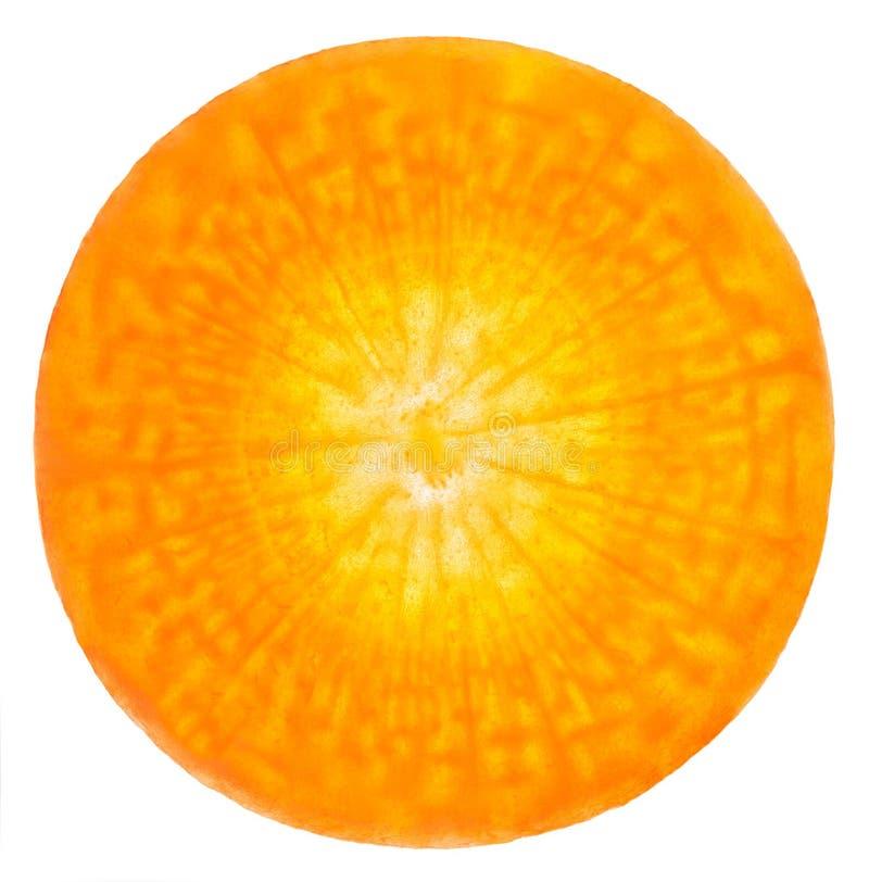 Zanahoria rebanada. Uno puede ver las células vivas imagen de archivo