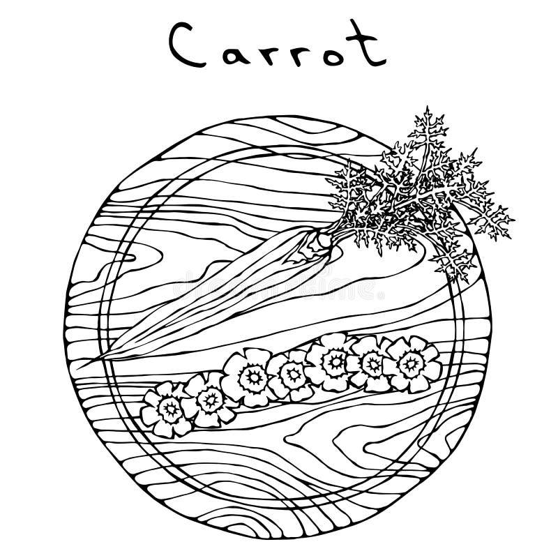 Zanahorias anaranjadas frescas con las hojas en rebanadas de la forma del corte de un tablero de madera y de la flor Vehículos ma ilustración del vector