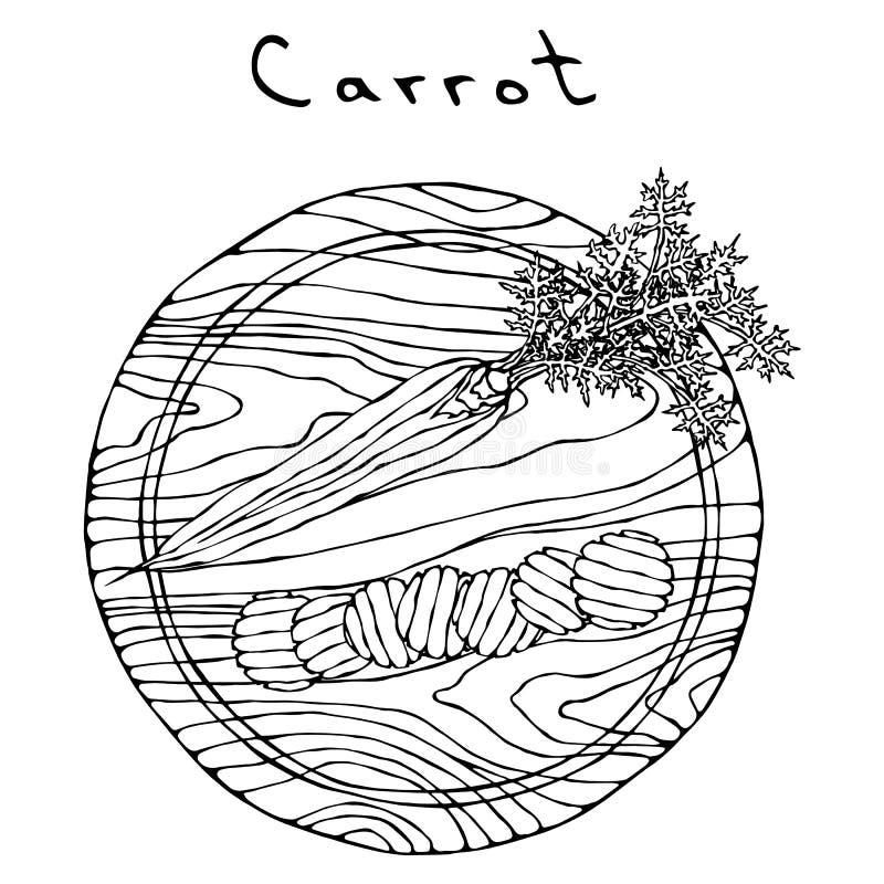 Zanahorias anaranjadas frescas con las hojas en rebanadas de un tablero de madera del corte y de la forma de onda Vehículos madur libre illustration
