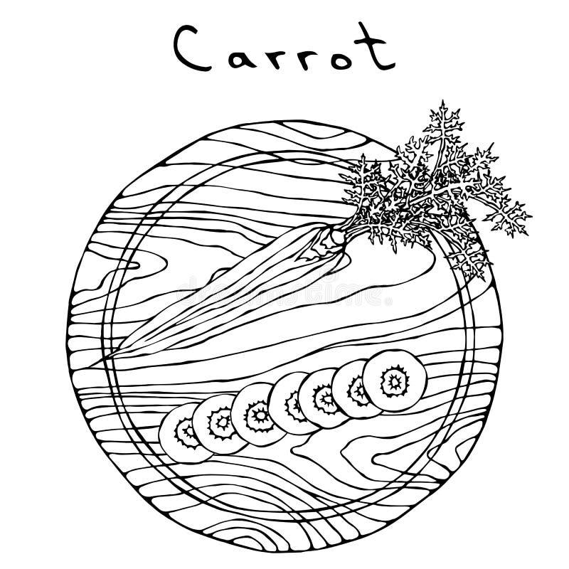 Zanahorias anaranjadas frescas con las hojas en un tablero de madera del corte y rebanadas redondas Vehículos maduros cocina vege libre illustration