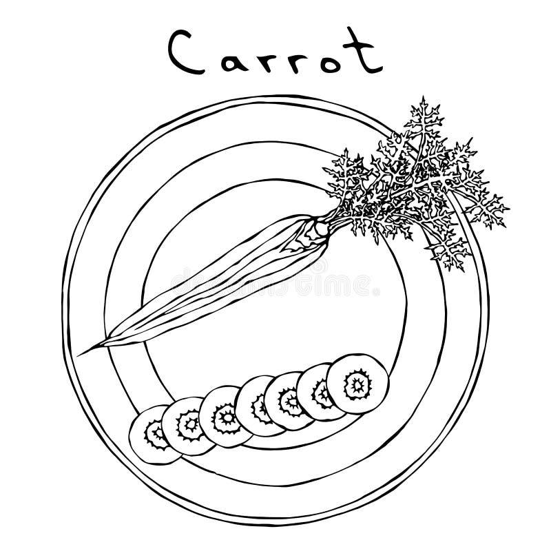 Zanahorias anaranjadas frescas con las hojas en una placa redonda Rebanadas redondas de la zanahoria Vehículos maduros cocina veg ilustración del vector