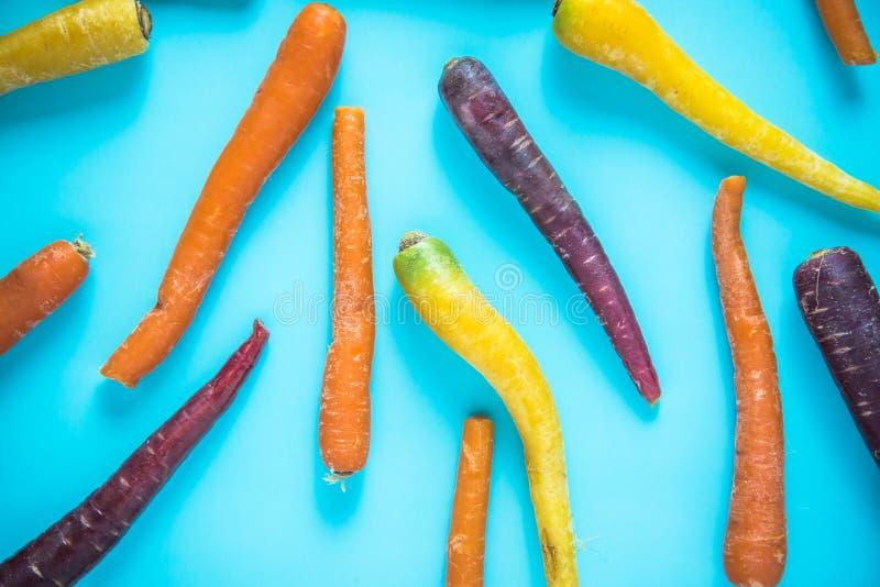 Zanahorias coloridas vibrantes en fondo azul imagen de archivo libre de regalías
