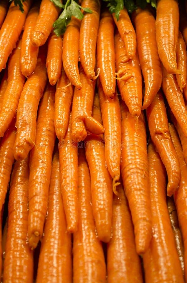Zanahorias crujientes fotografía de archivo