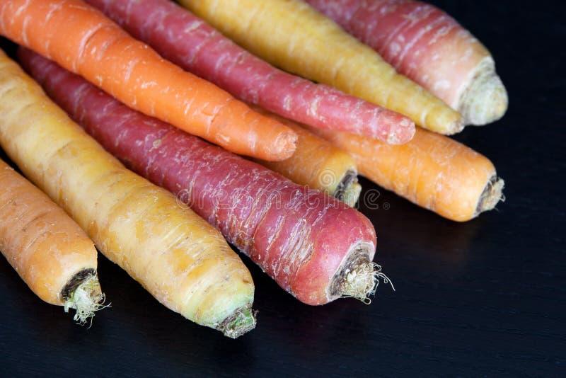 Zanahorias de Multiculored en fondo oscuro foto de archivo