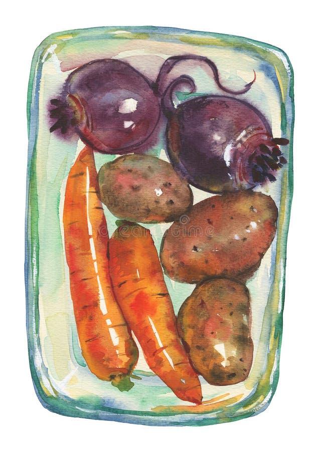 Zanahorias dibujadas mano, patatas, remolachas ilustración del vector