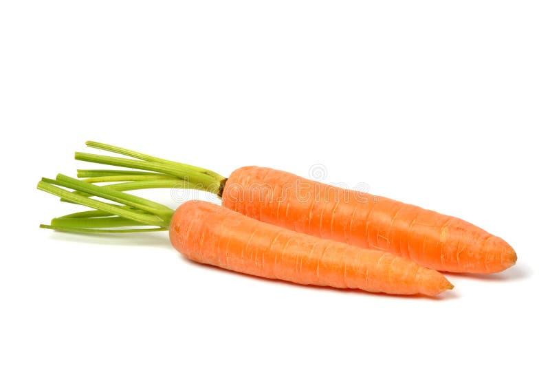 Zanahorias en blanco fotografía de archivo