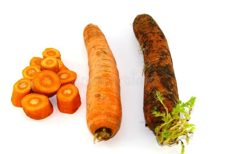 Zanahorias en tres versiones - cortadas, lavado y sucio con la tierra imagen de archivo