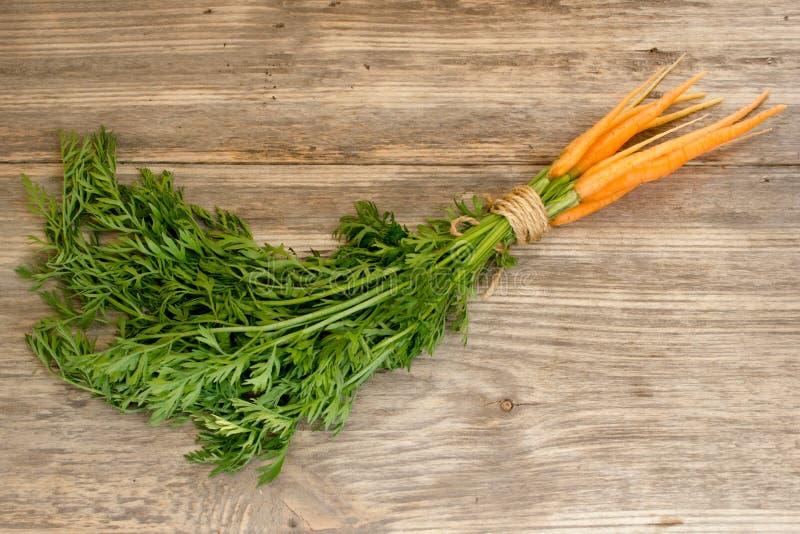 Zanahorias enteras recientemente lavadas fotografía de archivo libre de regalías