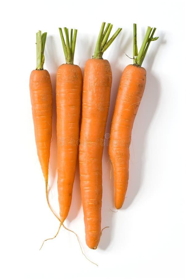 Zanahorias frescas en blanco imagen de archivo