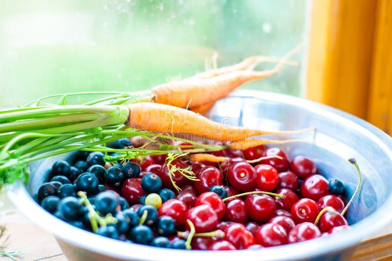 Zanahorias frescas y bayas recolectadas en el jardín, comida sana imagenes de archivo