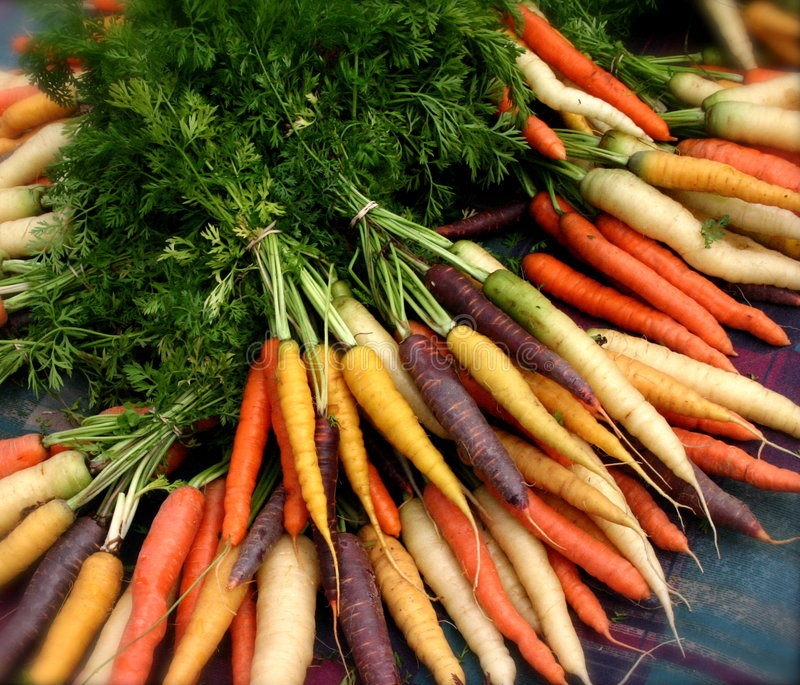 Zanahorias orgánicas imagen de archivo libre de regalías