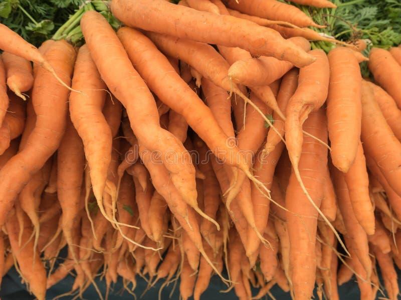 Zanahorias orgánicas en venta imágenes de archivo libres de regalías