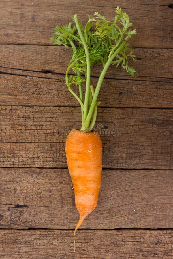 Zanahorias orgánicas frescas fotos de archivo
