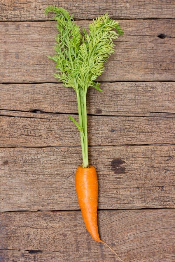 Zanahorias orgánicas frescas imagen de archivo