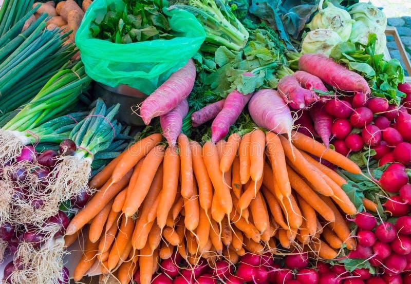 Zanahorias, rábano y herbaje foto de archivo
