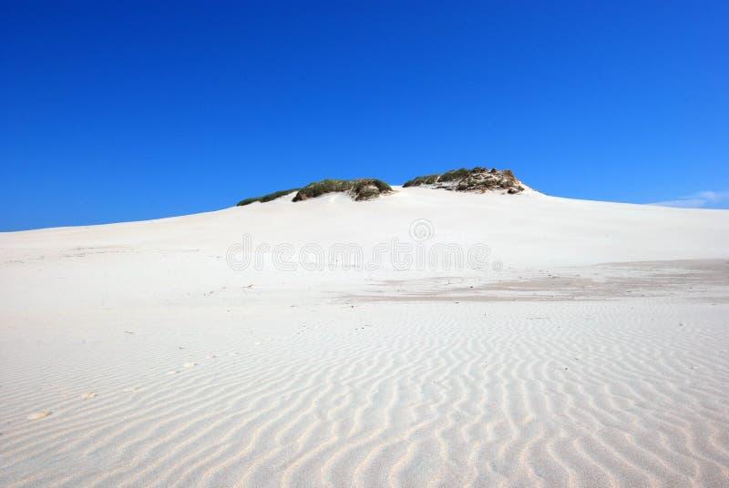 zand duinen op de woestijn royalty-vrije stock foto's