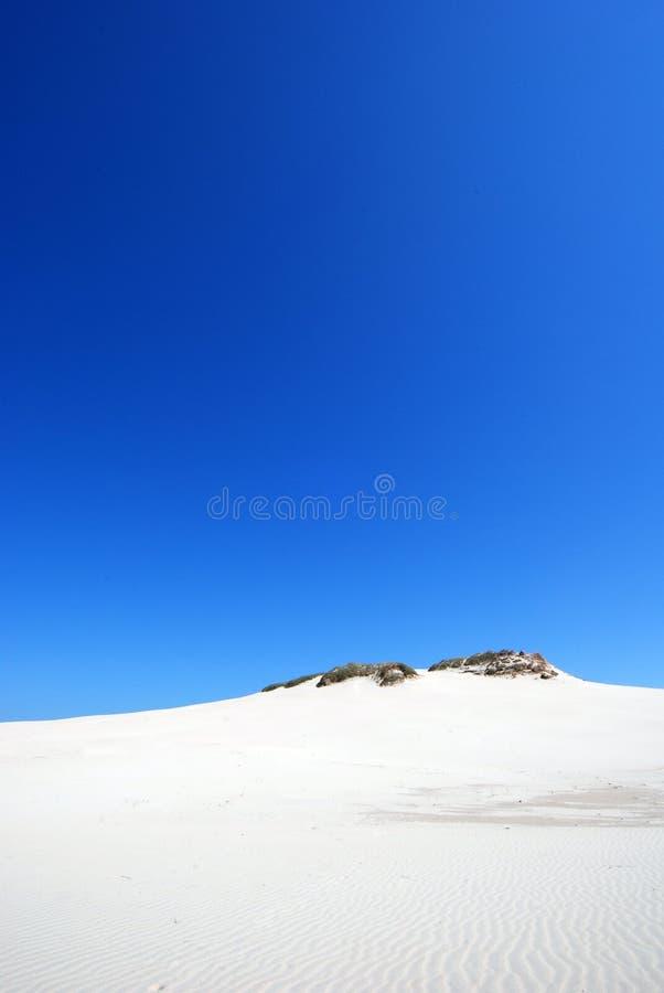 zand duinen op de woestijn stock afbeelding