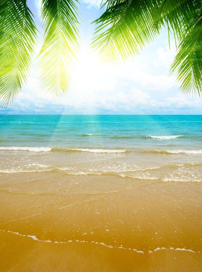 Zand en oceaan stock foto's