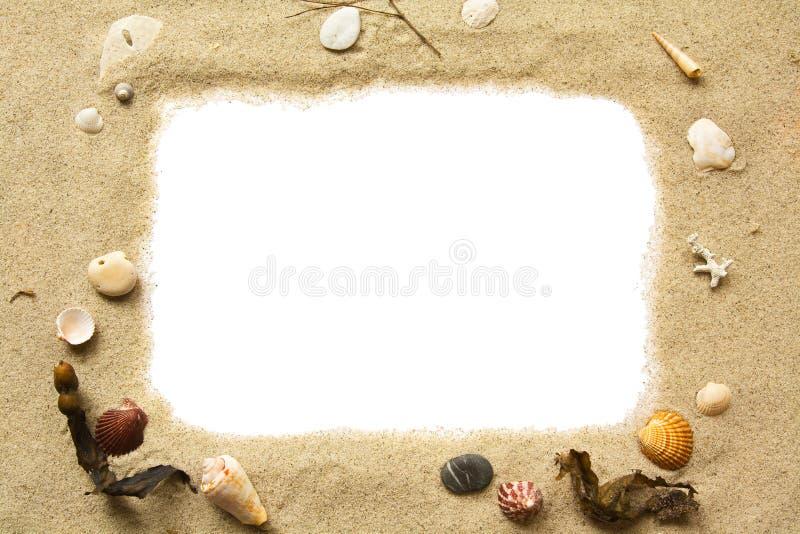 Zand en zeeschelpenframe stock foto