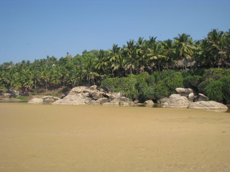 Zand, stenen en palmen stock foto's