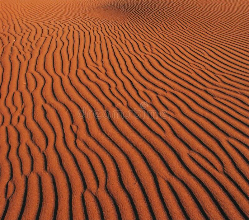 Zand van woestijn stock afbeeldingen