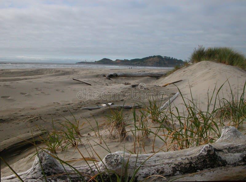 Zandduinen - Agaatstrand, Oregon stock afbeelding