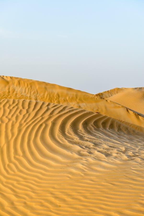 Zandduinen in de woestijn van Oman (Oman) stock foto's