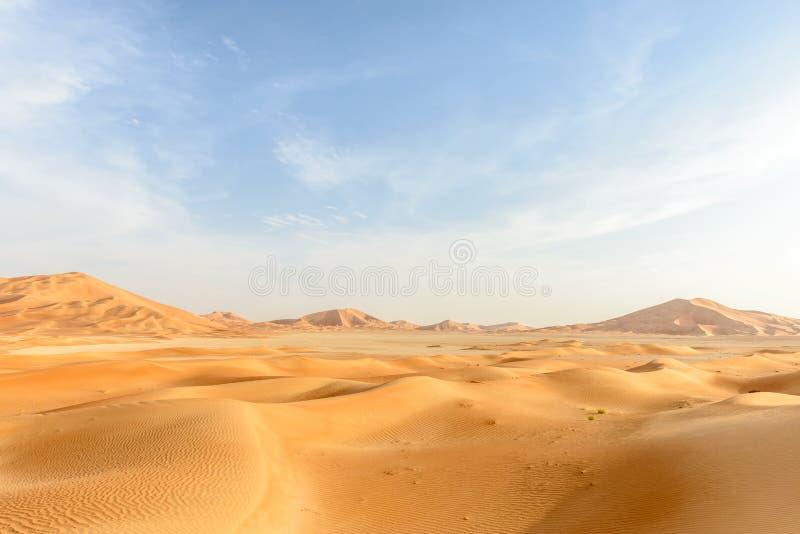 Zandduinen in de woestijn van Oman (Oman) stock afbeeldingen