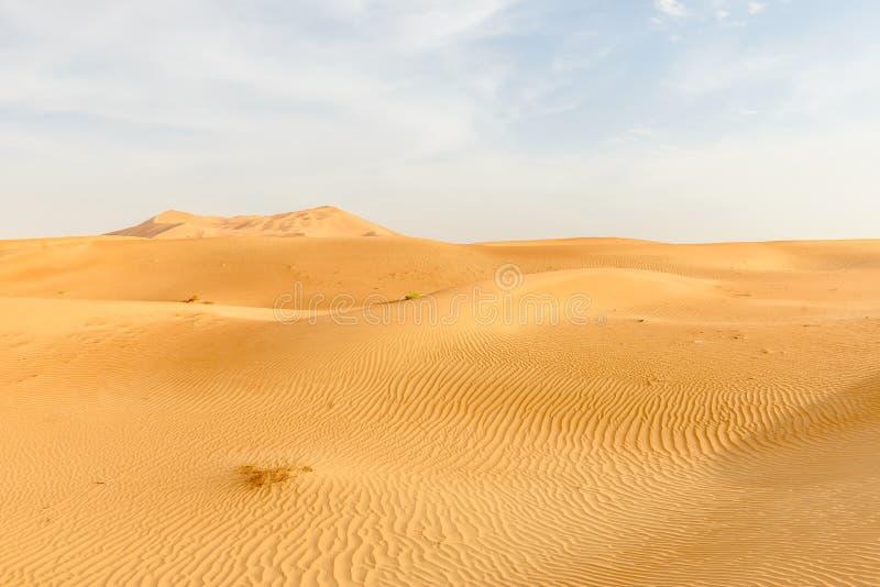 Zandduinen in de woestijn van Oman (Oman) stock fotografie