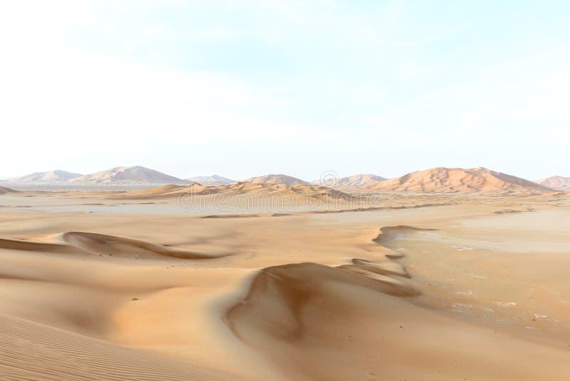 Zandduinen in de woestijn van Oman (Oman) royalty-vrije stock foto's