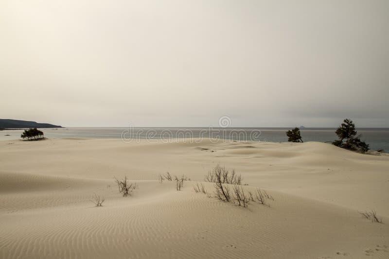 Zandduinen die vormt een maanlandschap met grijze overzees en loden de winterhemel geschetst zijn stock afbeelding